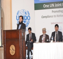One UN Joint Program on Environment